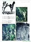 张正忠《田园山水画法》第31页