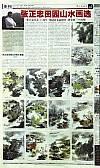 《中国书画报》2010.12.4第4版